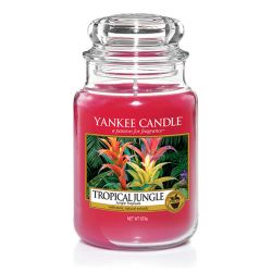Candele Yankee Candle online  color rosso  Tropical Jungle Large Jar online - Prezzo:   29.90 €