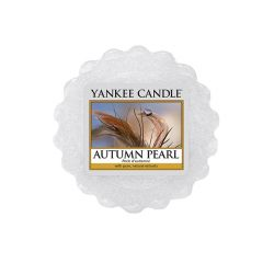 Candele profumate Yankee Candle color grigio  Autumn Pearl Wax Melt online - Prezzo:   2.25 €