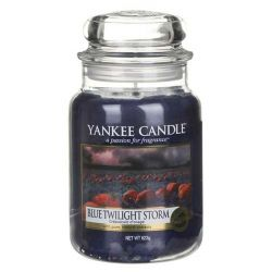 Candele profumate Yankee Candle color blu  Blue Twilight Storm Large Jar online - Prezzo:   29.90 €