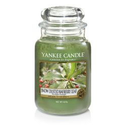 Candele profumate Yankee Candle color verde  Snow Dusted Bayberry Large Jar online - Prezzo:   29.90 €