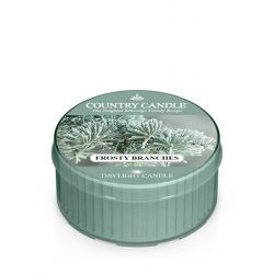 Candele profumate Country Candle color verde  Frosty Branches Daylight online - Prezzo:   3.65 €