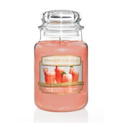 Yankee Candle  color arancione  White Strawberry Bellini Large Jar online - Prezzo:   29.90 €