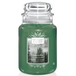 Candele profumate Yankee Candle color verde  Evergreen Mist online - Prezzo:   29.90 €