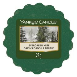 Candele profumate Yankee Candle color verde  Evergreen Mist online - Prezzo:   1.68 €